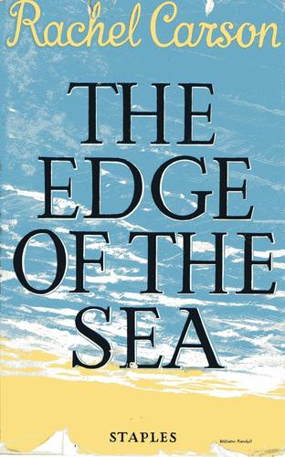 Download The edge of the sea