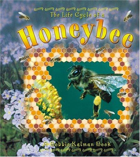 The Life Cycle of a Honeybee (The Life Cycle)