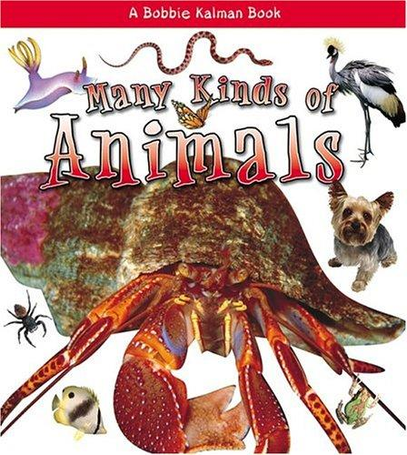 Download Many Kinds Of Animals (What Kind of Animal Is It)
