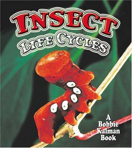 Download Insect Life Cycles (The World of Insects)