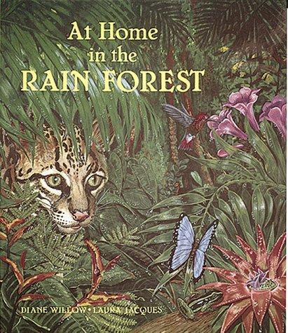 Download At home in the rain forest