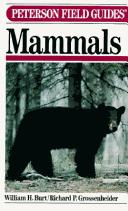 Download A field guide to the mammals