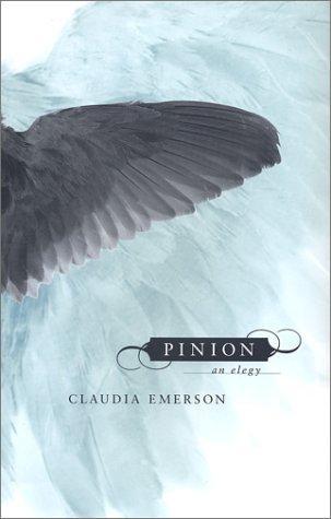 Download Pinion
