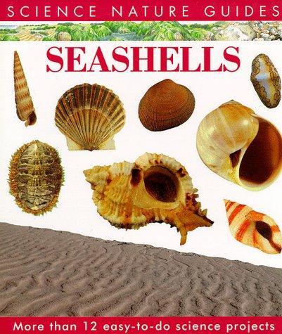 Download Seashells of North America