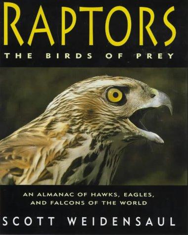 Download Raptors
