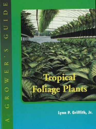 Download Tropical foliage plants