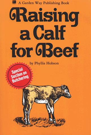 Raising a calf for beef by Phyllis Hobson