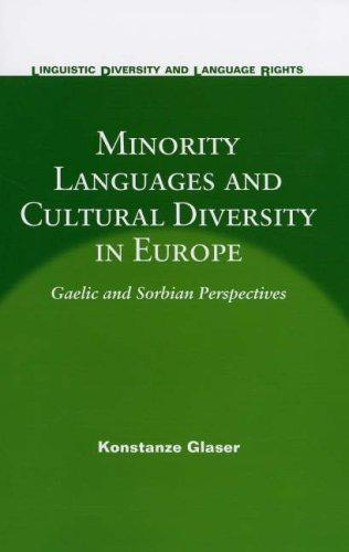 Minority Languages And Cultural Diversity in Europe by Konstanze Glaser