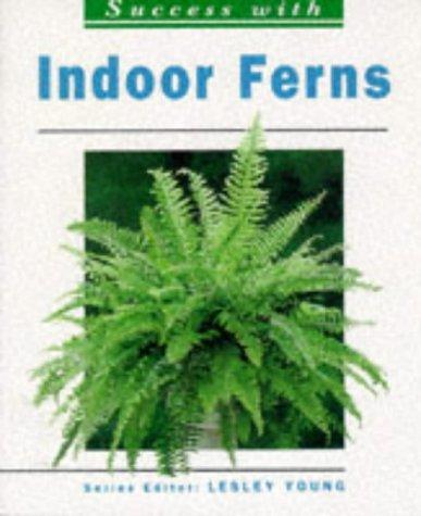 Indoor Ferns by Susanne Amberger-Ochsenbauer