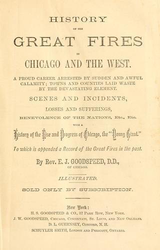 History of the great fires in Chicago and the West by Goodspeed, E. J.
